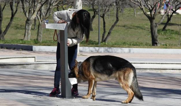 Ejemplo fuente para personas y mascotas